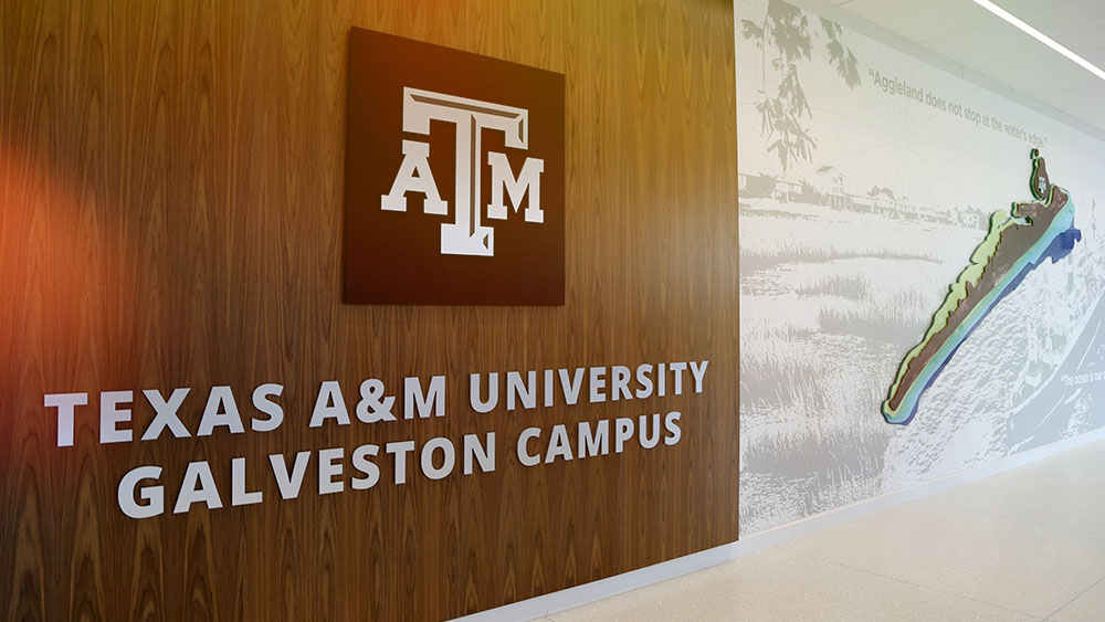 Texas A&M University Galveston Campus sign in new building
