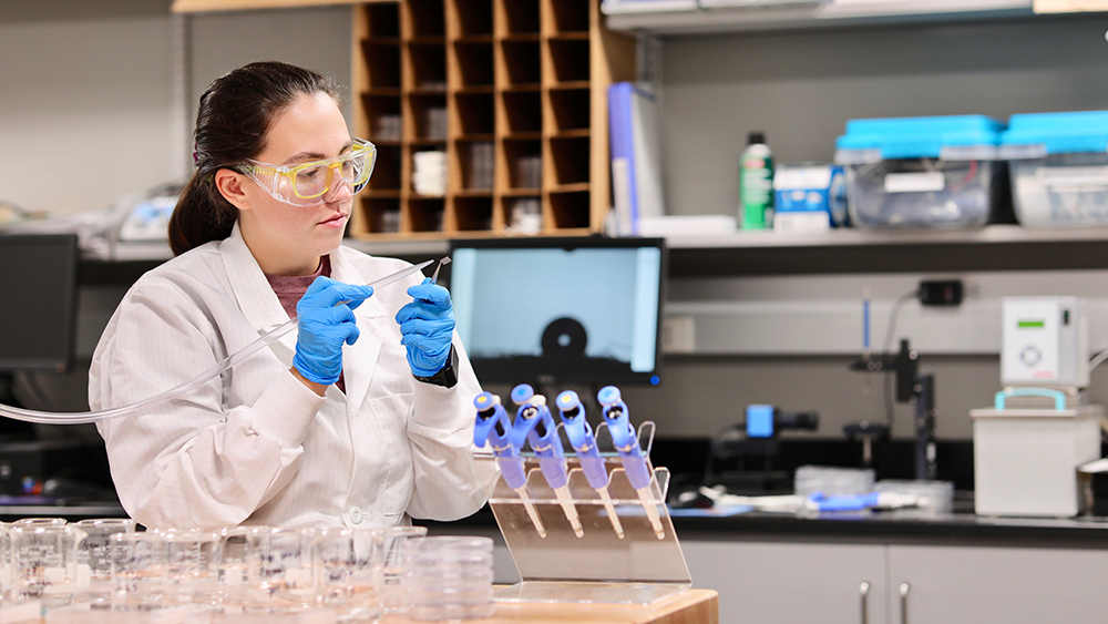 Student works on research in the lab